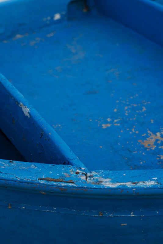 Norwegian catch of the day Puglia _Savelletri ph. Ann Casarin
