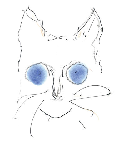 Choupetter-by-Karl-Lagerfeld for DRY