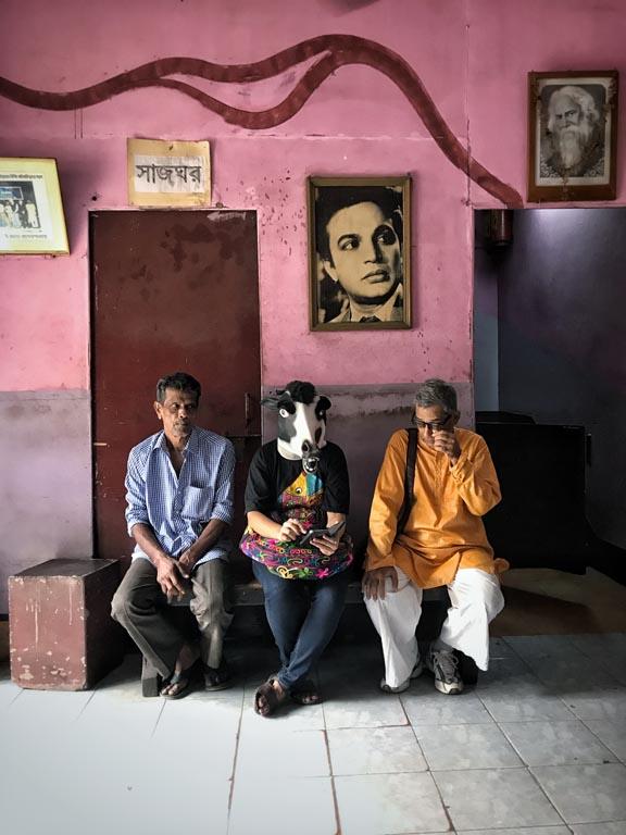 Cow Mask, Photo Sujatro Ghosh