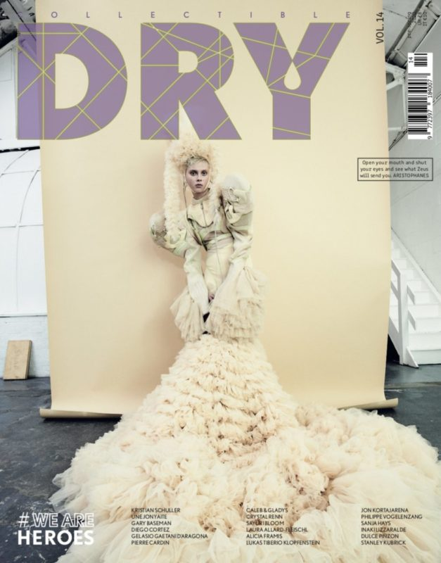 Collectible DRY Issue 14 Cover We Are Heroes Une Jonyaite
