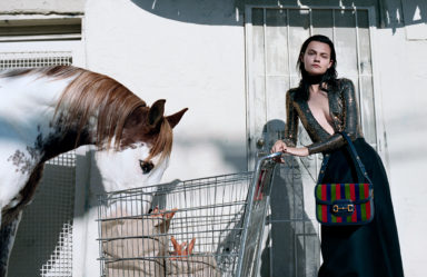 Of Course a Horse_Gucci_SS 20 Campaign_Alessandro Michele_Yorgos Lanthimos