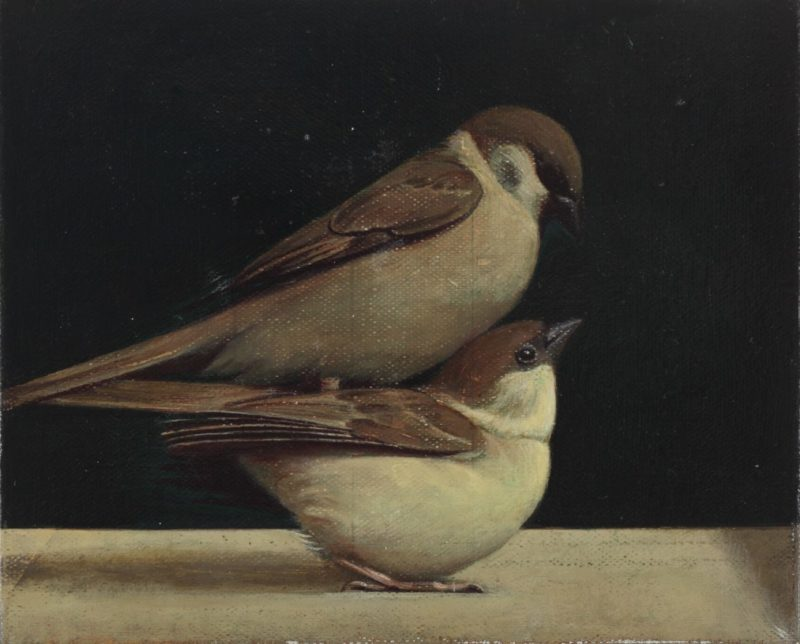 China We are with you_Fondazione Prada_Liu Ye Storytelling_Bird on Bird_2011