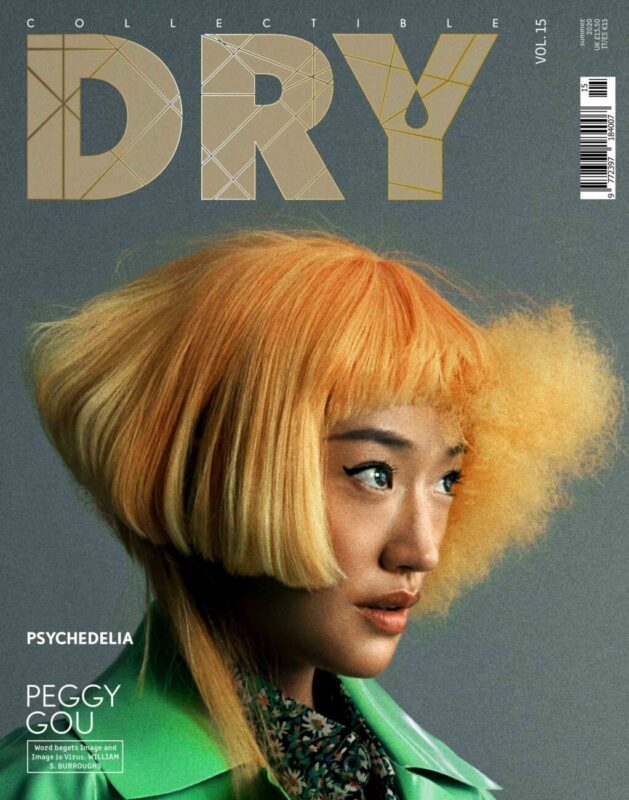 Collectible DRY Vol. 15 Cover Peggy Gou