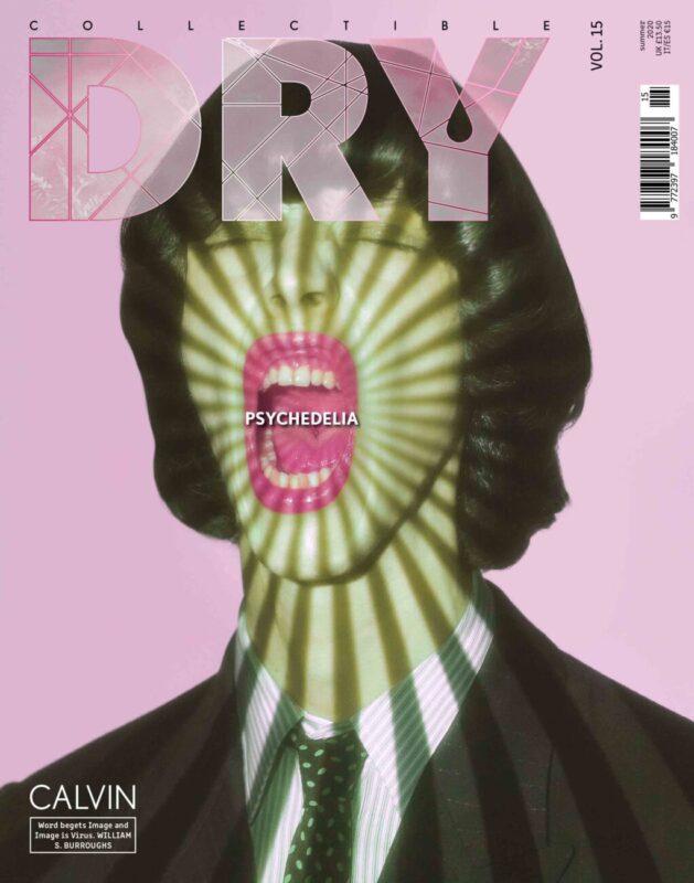 Collectible DRY Vol.15 Cover Calvin