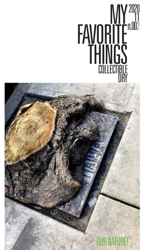 Cover My Favourite Things 2 attachment to collectible dry