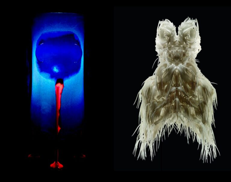 Two still life photos of two objects: Elephant by Gaetano Pesce 1995